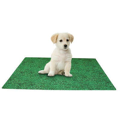 Leak Resistant Washable Puppy Potty  Training Pad, by Collections Etc