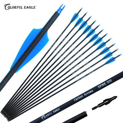 """28/30/31""""Archery hunting  carbon arrows for recurve/compound bow target Practice"""