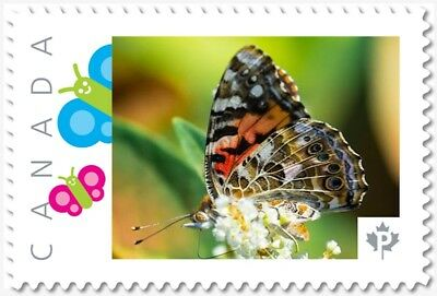 BUTTERFLY = White flower = Picture Postage stamp = MNH Canada 2018 [p18-01sn12]