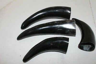 4 Cow horns  ....  x4b88  ... Natural colored, polished cow horns.,..