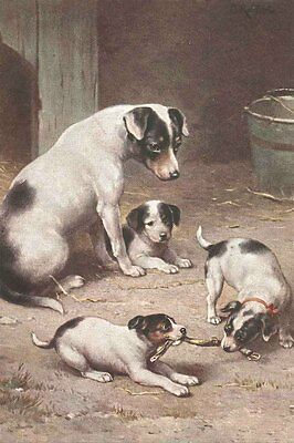 Jack Russell Terrier Dog w/ Puppies Carl Reichert  LARGE New Blank Note Cards