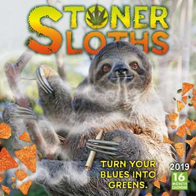 Stoner Sloths 2019 16-Month Square Wall Calendar by Sellers Publishing