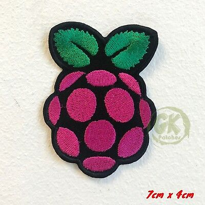 Cute Little Raspberry Iron/Sew on Embroidered Patch UK Seller