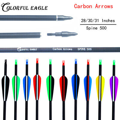 "28""/30'/31""' Archery Carbon Arrows For Recurve Compound Bow Hunting Screw Point"