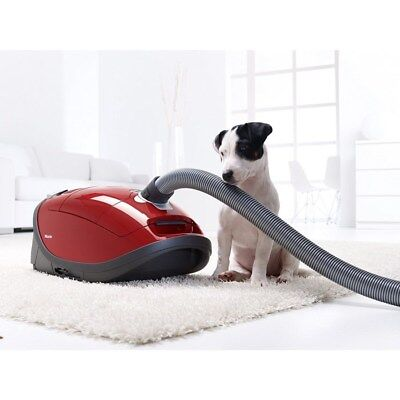 Miele Complete C3 Cat & Dog powerline 890W Cylinder Vacuum Cleaner  p