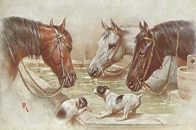 Jack Russell Terrier Puppies & Horse by C Reichert  LARGE New Blank Note Cards