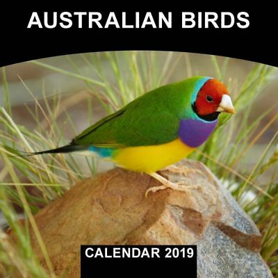 2019 Calendar Australian Birds Mini Wall Calendar by Browntrout