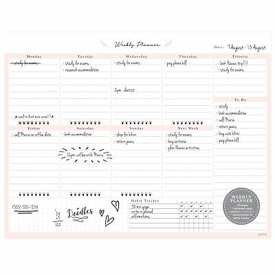 Desktop Weekly Planner Notepad 8.5x11 | 60 Undated Tear-Off Pages | Schedule