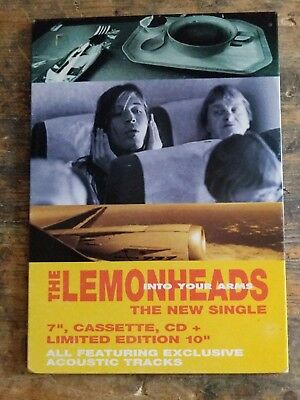 original EX SHOP DISPLAY stand up THE LEMONHEADS INTO YOUR ARMS