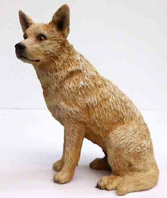 Australian Cattle Dog, Red, Sitting,  Conversation Concepts, Item Df87A