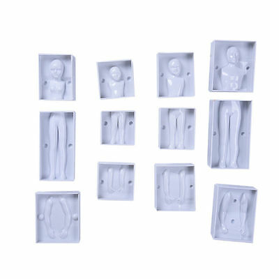 3D Family People Body Cake Mold Fondant Cake Decorating Mould Sugarcraft Mold