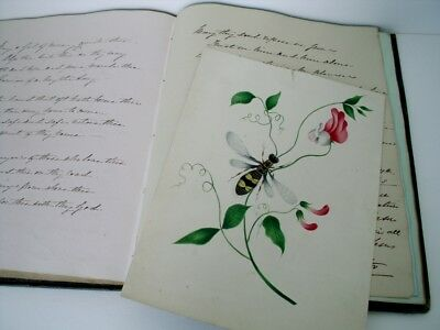 Victorian Album 1840s - Writings Sketches Isle of Man interest Newham Family