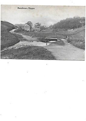 BIGGAR Postcard Burnbraes Lanarkshire Early