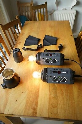 Bowens Esprit Gemini 500 dual head, with kit bag (flash heads and cables)