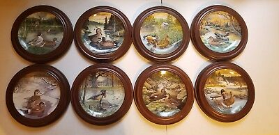 Bart Jerner Bird Collector Plates w/Frames - Lot of 8, Edwin M. Knowles