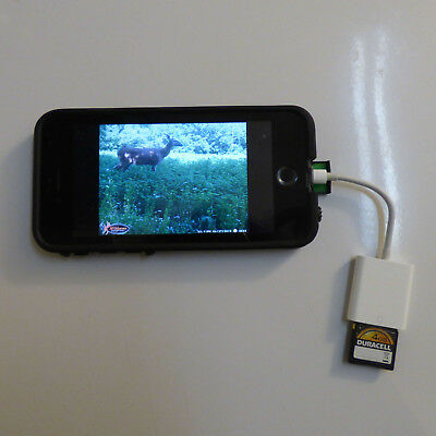 SD Card Reader Lightning Adapter Trail Game Camera Viewer iPhone Ios