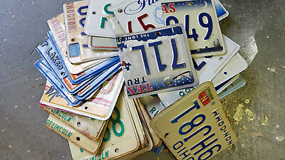 Lot of 50+ partial license plates
