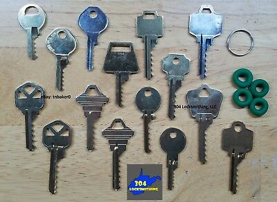 Professional 15 key Depth Key Set with bump rings (Residential + Commercial)