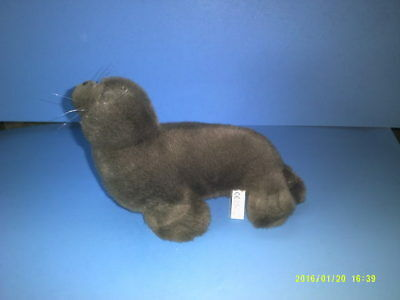 Brown Plush Seal Marine Wildlife