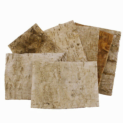 Birch tree bark sheets (bundle of 7) 24 x 17cm (9.5 x 6.5 inch)