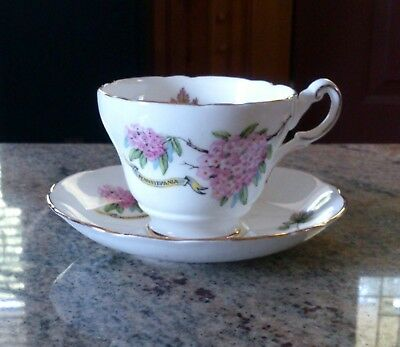 "Regency ""State of Pennsylvania Seal & Pink Mountain Laurel"" Footed Cup & Saucer"