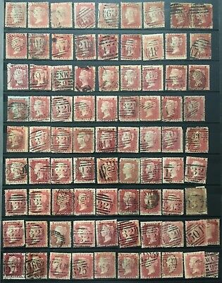 83 QV  1d Reds perf used. unsorted/unchecked