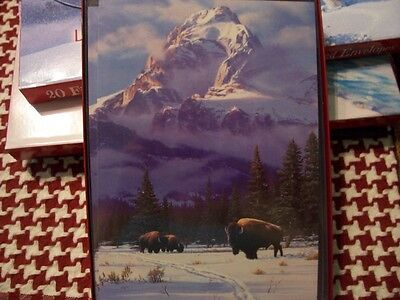 Leanin Tree Christmas Card Set Beautiful Winter Buffalo Scene 10 Pk New