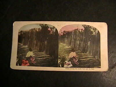 Stereoview BLACK AMERICANA SOME COME TO LOOK BUT NOT TO EAT DAD BABY WATERMELON