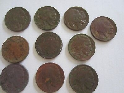 VINTAGE Coin Lot Of 10 Buffalo Nickels found with a metal detector