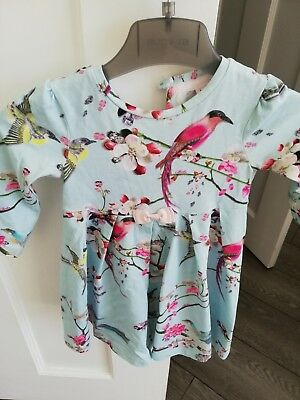 Baby girls Ted Baker dress age 12-18months