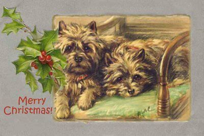 Cairn Terrier Dogs  by Lucy Dawson 1930's ~ 8 LARGE New Christmas Note Cards