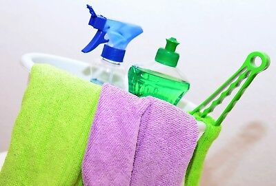 Established Domestic Cleaning Franchise For Sale in The Highlands