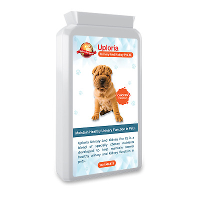 UTI With Urinary And Kidney Daily Support For Cats & Dogs