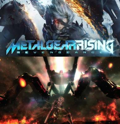METAL GEAR RISING: REVENGEANCE - WINDOWS - Region Free Steam Key