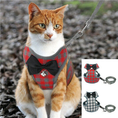 Cute Small Large Cat Walking Jacket Mesh Padded Kitten Harness and Leash 2 Color