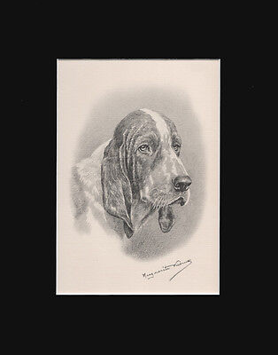 "Basset Hound Dog Portrait by M. Kirmse Limited Edition Print 1938  8x10"" Matted"