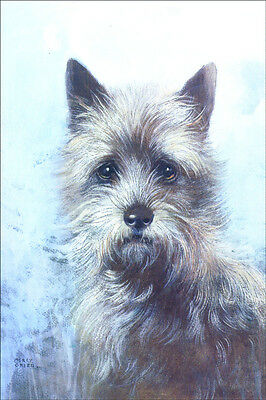 Cairn Terrier Portrait by Marcy Creed 1920's   LARGE New Blank Note Cards