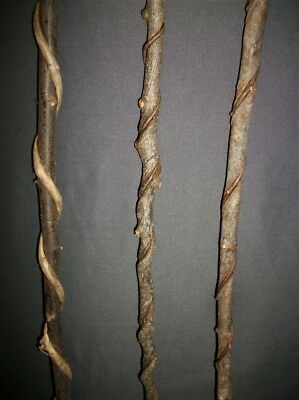 3 Raw Smaller Vine Twisted Craft Wood Carving Blank Sticks Witch Wizard Wand #13