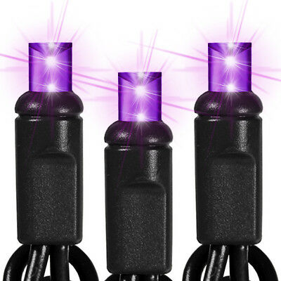 LED Purple Halloween Mini wide angle Light Set, 60 Lights, Indoor/Outdoor