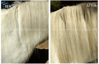 Horse hair extensions, addition to mane for filling in gaps