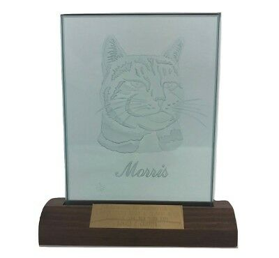 Vintage Morris The Cat Etched Glass Plaque Artist Arthur W. Hewitt Ltd Edition