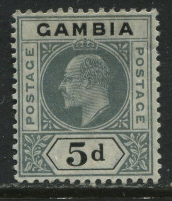 Gambia KEVII 1904 5d mint o.g.