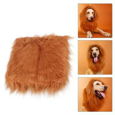 4Size Dog Lion Mane Wig Hair Clothes Puppy Costume Funny Pet Dress Up Halloween