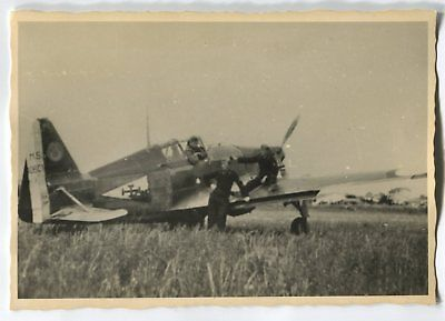 Wwii Photo From Russian Archive: Italian Air Forces Macchi C.202 Aircraft