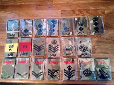 ACF Rank Slide Package in Multicam MTP from Cadet to Colonel