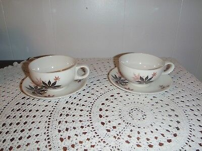2-VTG SHENANGO CHINA~PETER TERRIS Original Cup and Saucers~Calico Leaves~1950's