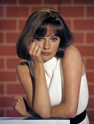 Airport Young Jacqueline Bisset Glamour Photo