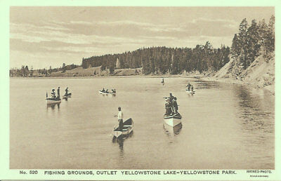 Antique Postcard Yellowstone Park Haynes Photo #520 Fishing Grounds, Outlet Lake