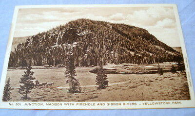 Antique Postcard Yellowstone Park Haynes Photo #501 Junction Firehole & Gibbons
