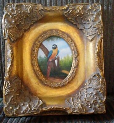 Vintage/Antique Small Oil Painting of COLORFUL PARROT in a Ornate Gold Frame